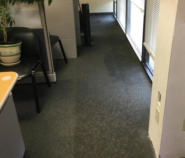 Water Loss in an Office Space