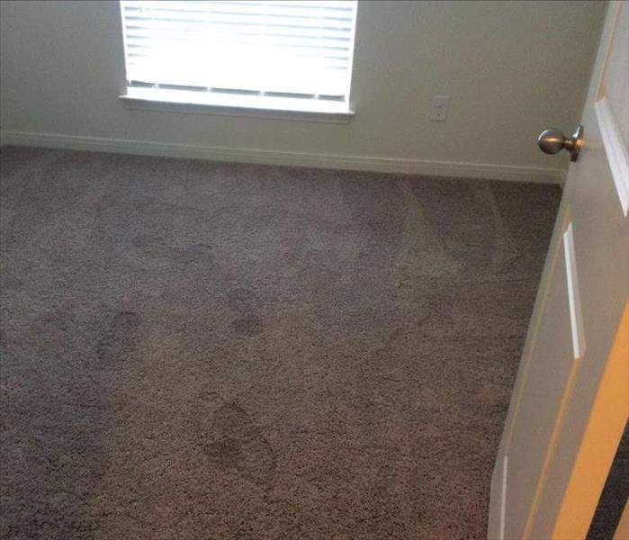 Wet Carpet From Water Loss