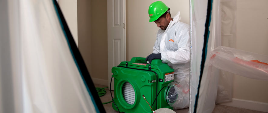 San Marcos, TX mold cleanup