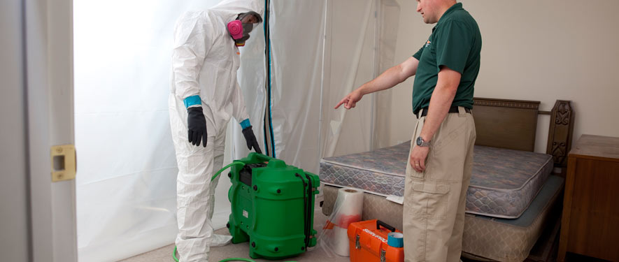 San Marcos, TX mold removal process